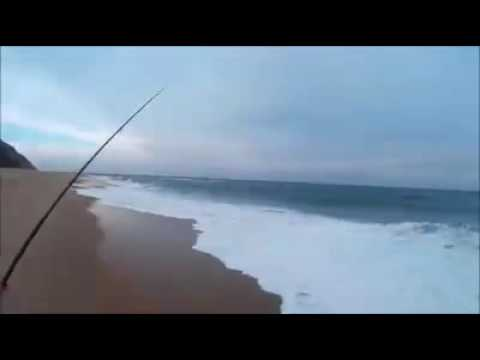 ASFN South Africa Surfcasting