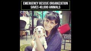 ResQ Charitable Trust has rescued 40,000 street animals in Pune