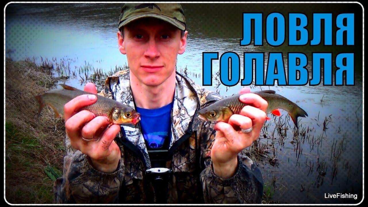 рыбалка пикером на реке