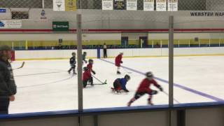Strong Hockey Camp Webster 2016