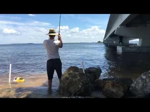 Fishing at Sanibel Island | Catfish, Snapper, and Jack