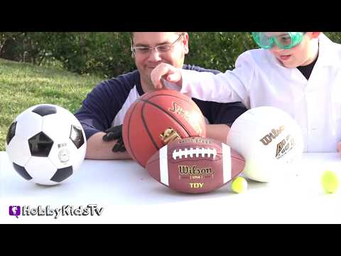 What's in a Basketball? Science Lab + Toy Surprise HobbyKidsTV