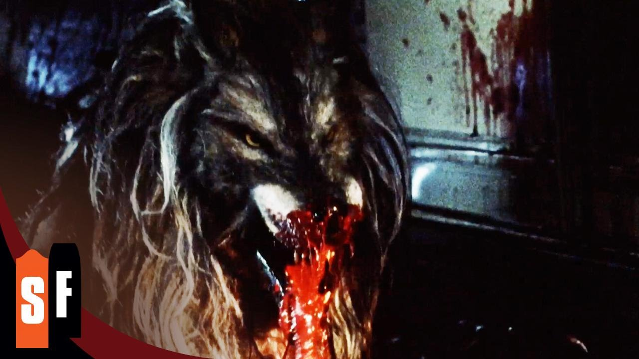 Dog Soldiers (2/3) Bloody Werewolf Attack (2002) HD - YouTube