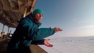 Арктическая командировка «Пульс города». Тайны дна Северного Ледовитого океана