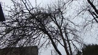 2017 05 02 дача, май холодней марта
