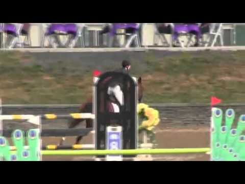 Video of Charisma Blue ridden by Stacey Mahoney from ShowNet!