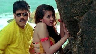 Seetaramaraju Movie    Ecstacy Privacy Video Song    Nagarjuna,Sakshi Shivanand