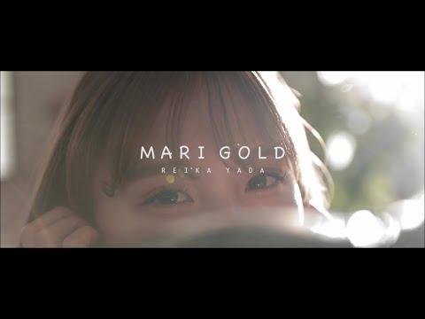 【cover】マリーゴールド / あいみょん
