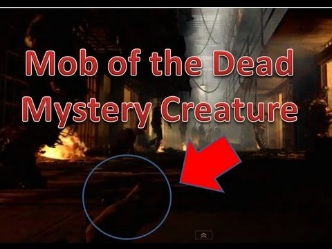 Mob of the dead mystery creature rodent black ops 2 - Mob of the dead pictures ...