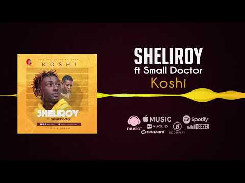 Sheliroy - Koshi [Official Audio] ft. Small Doctor
