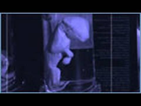 Part 6 Thylacine - Animal X Natural Mystery Unit