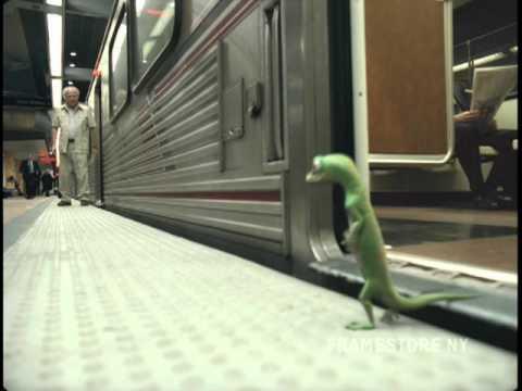 Geico Gecko - Subway - Framestore, NY