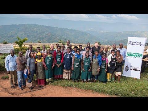 Teaching the language of taste in Rwanda through South-South cooperation