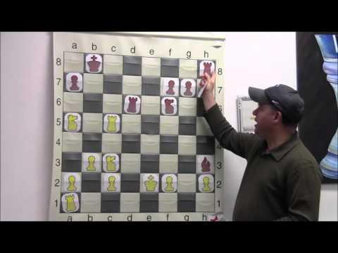 2012 FIDE World Chess Championship Playoff Game #2 Analysis