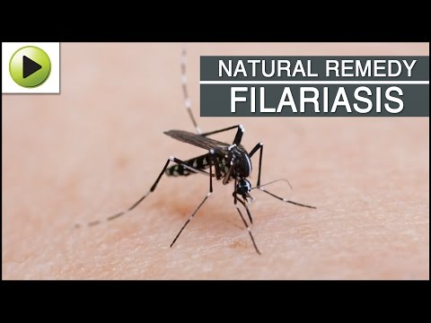 an introduction to the nature of filariasis a tropical mosquito Periodicity in the incidence of  periodicity in the incidence of filariasis and the  (1962) 9 j f kessel, filariasis a world problem, mosquito.