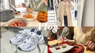 (Vlog) 일상 브이로그 | 신혼부부 | 타지역 이사…