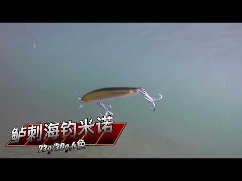 Kingdom Fishing Video 7502 Sea Fishing Minnow