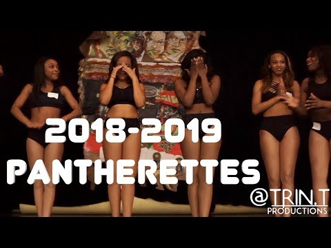 McKinley Pantherette Tryouts (2018-2019) | Final Cuts
