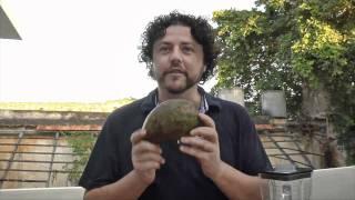 In The Yucatan: Remixto Arrachera Tacos