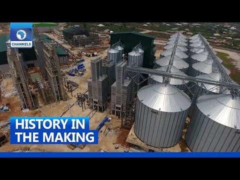 Imota: Lagos To Float Largest Rice Mill In West Africa
