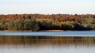 Antonio Vivaldi: Cztery Pory Roku - Jesień / The Four Seasons - Autumn (ver. 1)