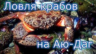 Ловля крабов Крым Аю-Даг HD GoPro