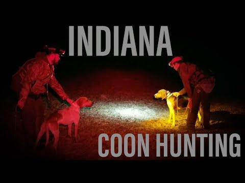 Nite Life Prostaff Coon Hunt