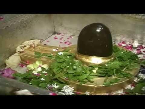 काशी विश्वनाथ मंदिर वाराणसी - Live Darshan