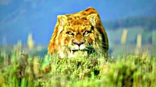 Вымершие животные КТО ОНИ