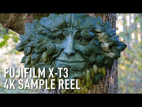 Fujifilm X-T3 4K Eterna sample reel by...