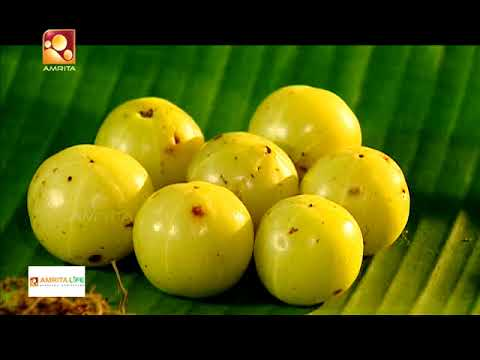 Ayurvedic treatments & Ayurvedic medicines | Jeevadhara | Episode 69
