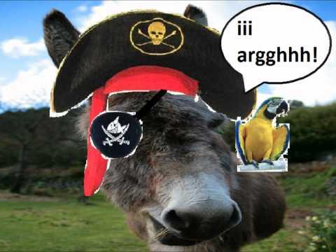 donkey pirate ii argh