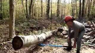 Cant Hook avec Log Stand LogRite au Lac Bowker