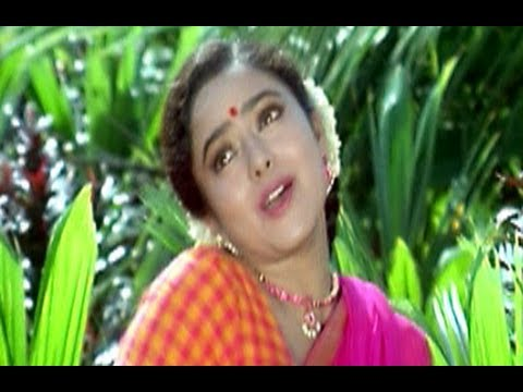 Dongata Songs | O Chilakaa Raa Chilakaa Song | Jagapathi Babu | Soundarya