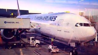 VUELO a Estambul con Turkish Airlines ★ ALEX TIENDA