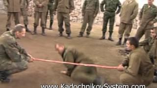 The Kadochnikov Systema: a Short Introduction to the Kadochnikov Systema