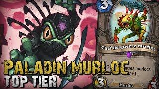Paladin murloc - Le meilleur deck ?