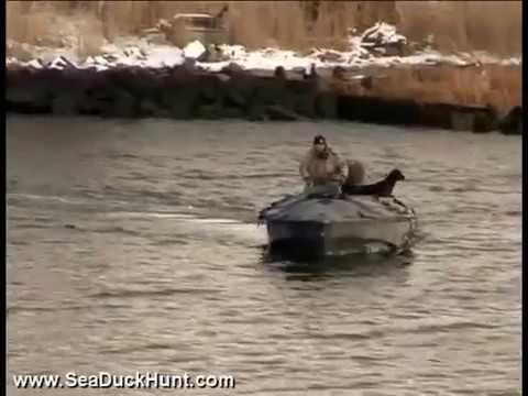Sea Duck & Bluebills Hunt