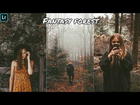 Fantasy forest pleasent moody tone   lightroom editing   photo editing tutorial