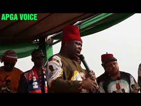 INEC Must Conduct Anambra Central Re-run Election — Umeh
