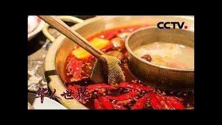 《华人世界》 20190822| CCTV中文国际