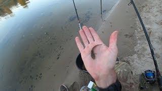 Риболовля на Десні біля села Погреби