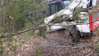 Franklin Tree & Land Clearing, Mulching Trees With A Skid Steer