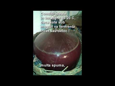cum sa faci vin acasa 2016 - Making Wine at Home