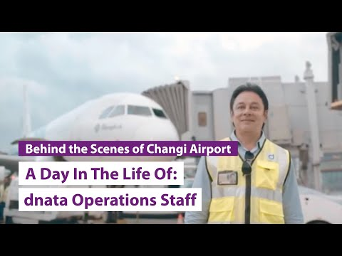 A Day In The Life Of: Dnata Operations Staff