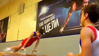 2 й взрослый разряд по спортивной гимнастике