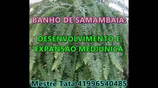 SAMAMBAIA: BANHO PODEROSO PARA DESENVOLVIMENTO MEDIÚNICO