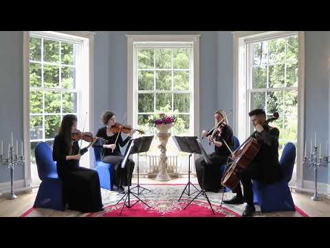 Leeds String Ensemble - Our Repertoires | The Leeds Wedding