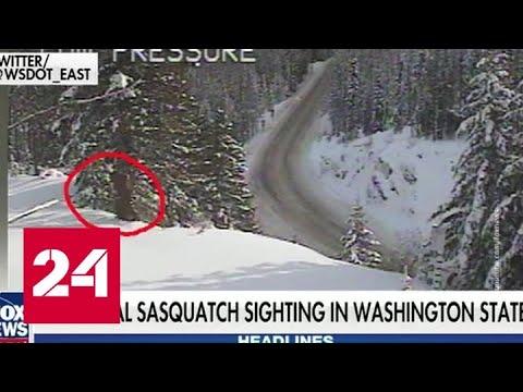 Министерство транспорта США уверено, что зафиксировало снежного человека - Россия 24