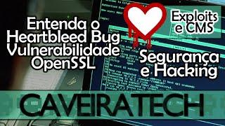entenda o heartbleed bug vulnerabilidade openssl ssl tls